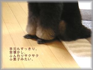 PICT1020.JPG