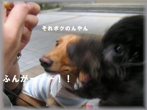 PICT1078.JPG